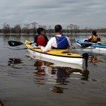 paddleclub1