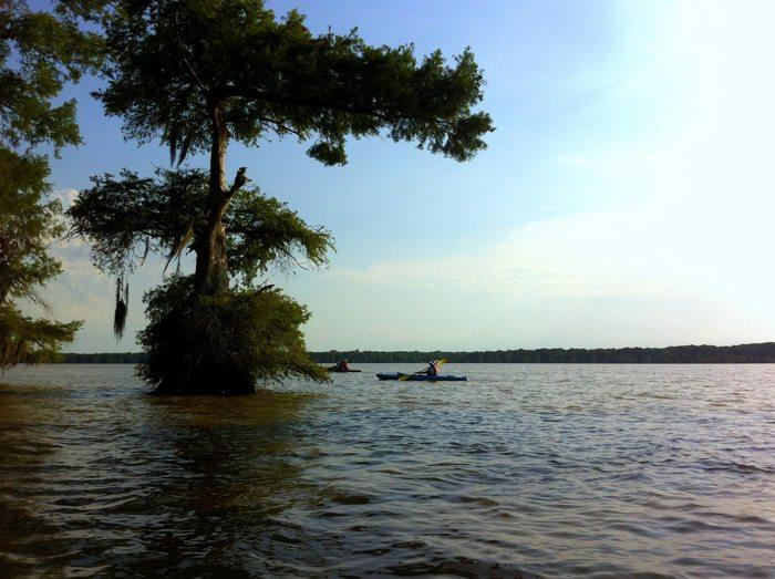 Bayou Grand Gueule Paddle July 2014