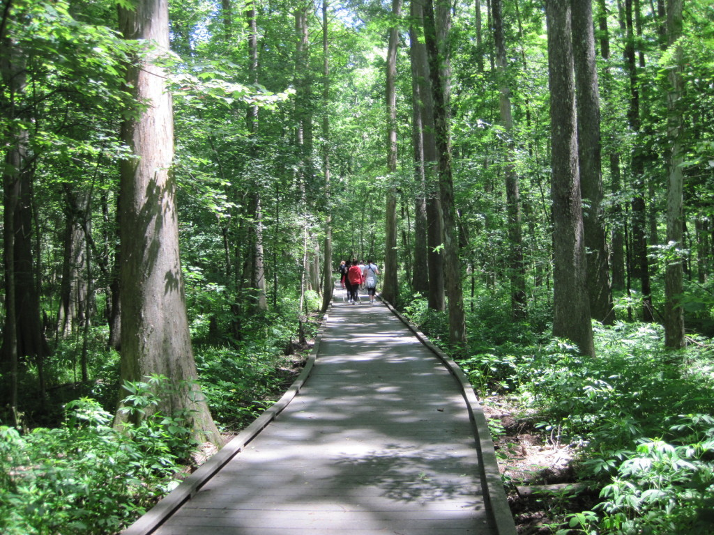 Chicot State Park - Pack and Paddle on